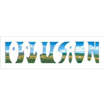 Optical-Illusion_JohnLangdon_t